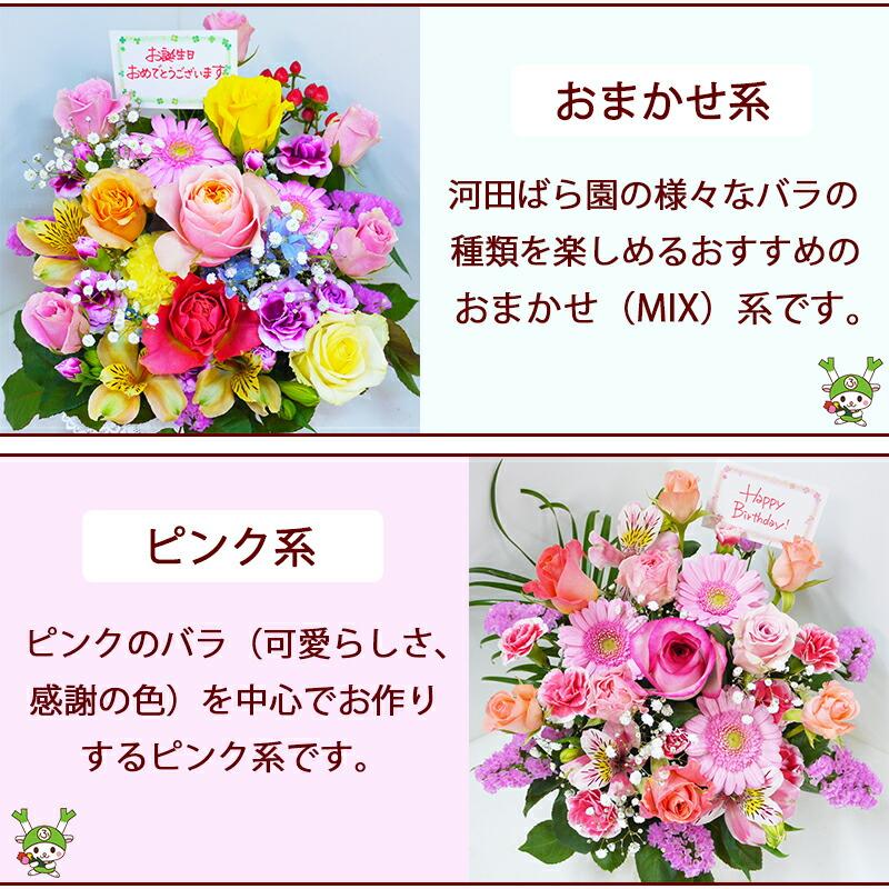 河田ばら園おまかせMIX系ピンク系