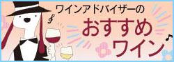 京橋ワイン ワインアドバイザーのおすすめワイン
