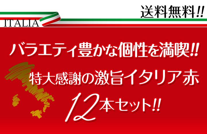 【送料無料】≪バラエティ豊かな個性を満喫!!≫特大感謝の激旨イタリア赤ワイン12本セット!!