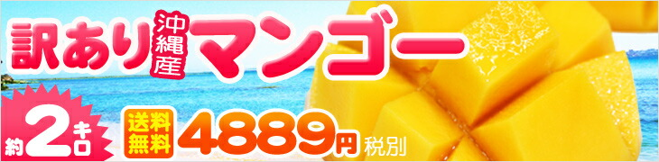訳あり 沖縄産マンゴー 約2kg