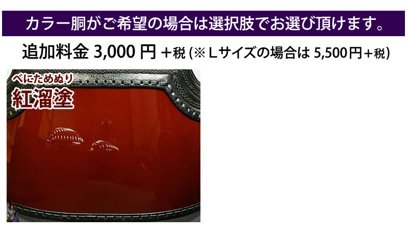 剣道 防具 セット 5ミリ ピッチ刺し 実戦型 朱音 カラー胴
