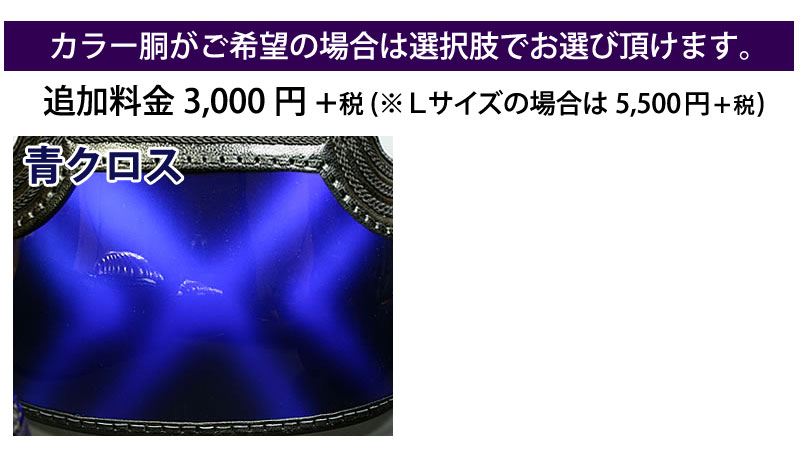 剣道 防具 セット 5ミリ ピッチ刺し 実戦型 大河 カラー胴