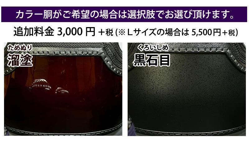 剣道 防具 セット 5ミリ ピッチ刺し 実戦型 銀河 カラー胴