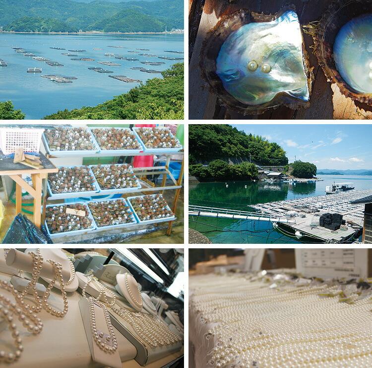 愛媛県漁業協同組合