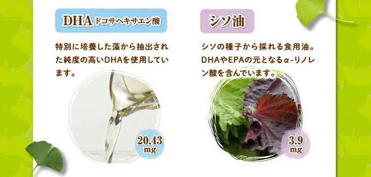 DHAドコサヘキサエン酸 シソ油 シソの種子から採れる油。