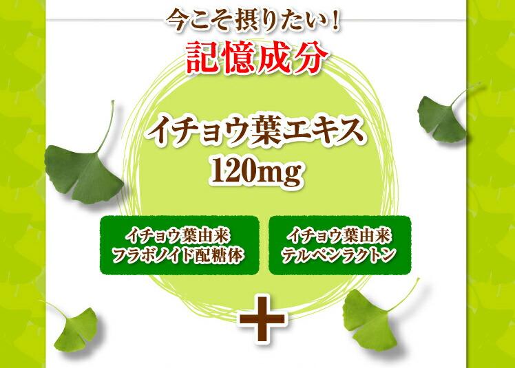 今こそ摂りたい!記憶成分イチョウ葉エキス120mg イチョウ葉由来フラボノイド配糖体 イチョウ葉由来テルペンラクトン