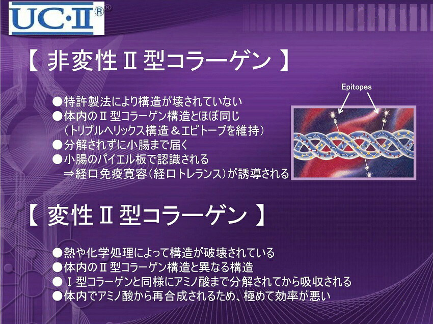非変性2型コラーゲン1
