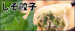 しそ餃子   餃子 宇都宮餃子 健太餃子