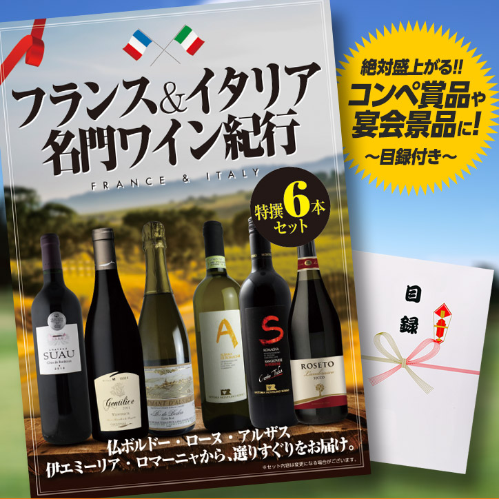 特大A3パネル付目録 フランス&イタリア名門ワイン紀行6本セット