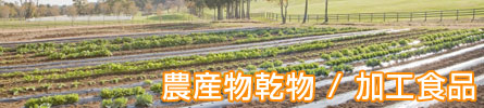 農産,畑,自然,オーガニック,国産,野菜