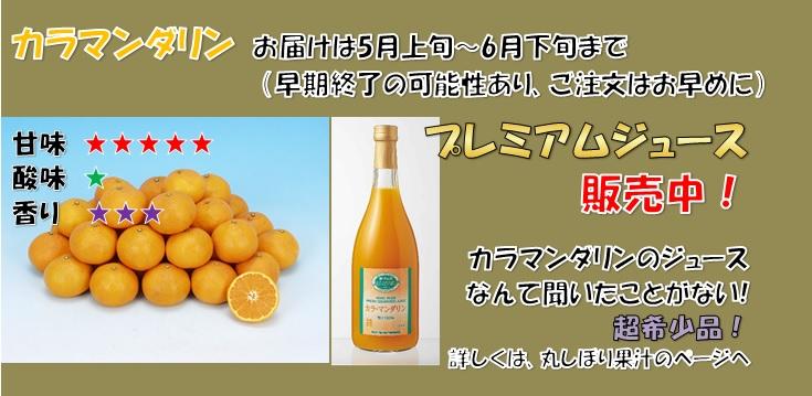丸しぼり果汁カラマンダリンジュース美味おいしい感激感動やみつき
