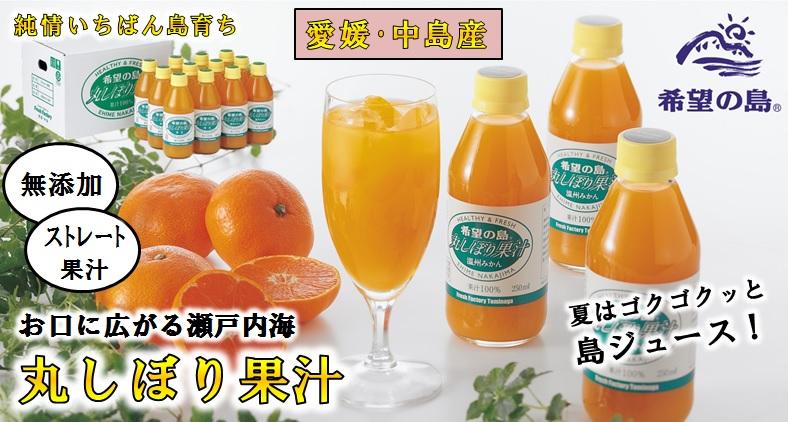 丸しぼり果汁
