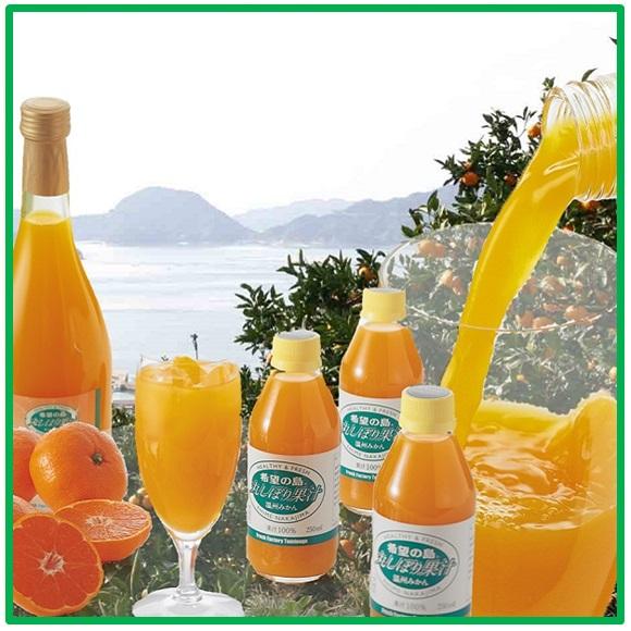 丸絞り果汁