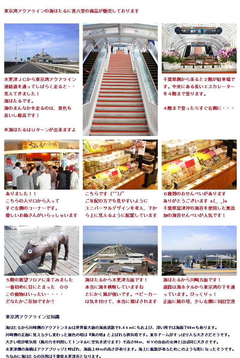 東京湾アクアラインの海ほたる