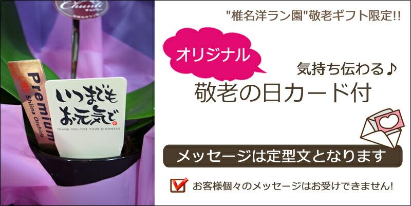 敬老ギフト 椎名洋ラン園 オリジナルカード