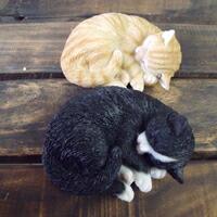 かわいい♪ミニ眠り猫