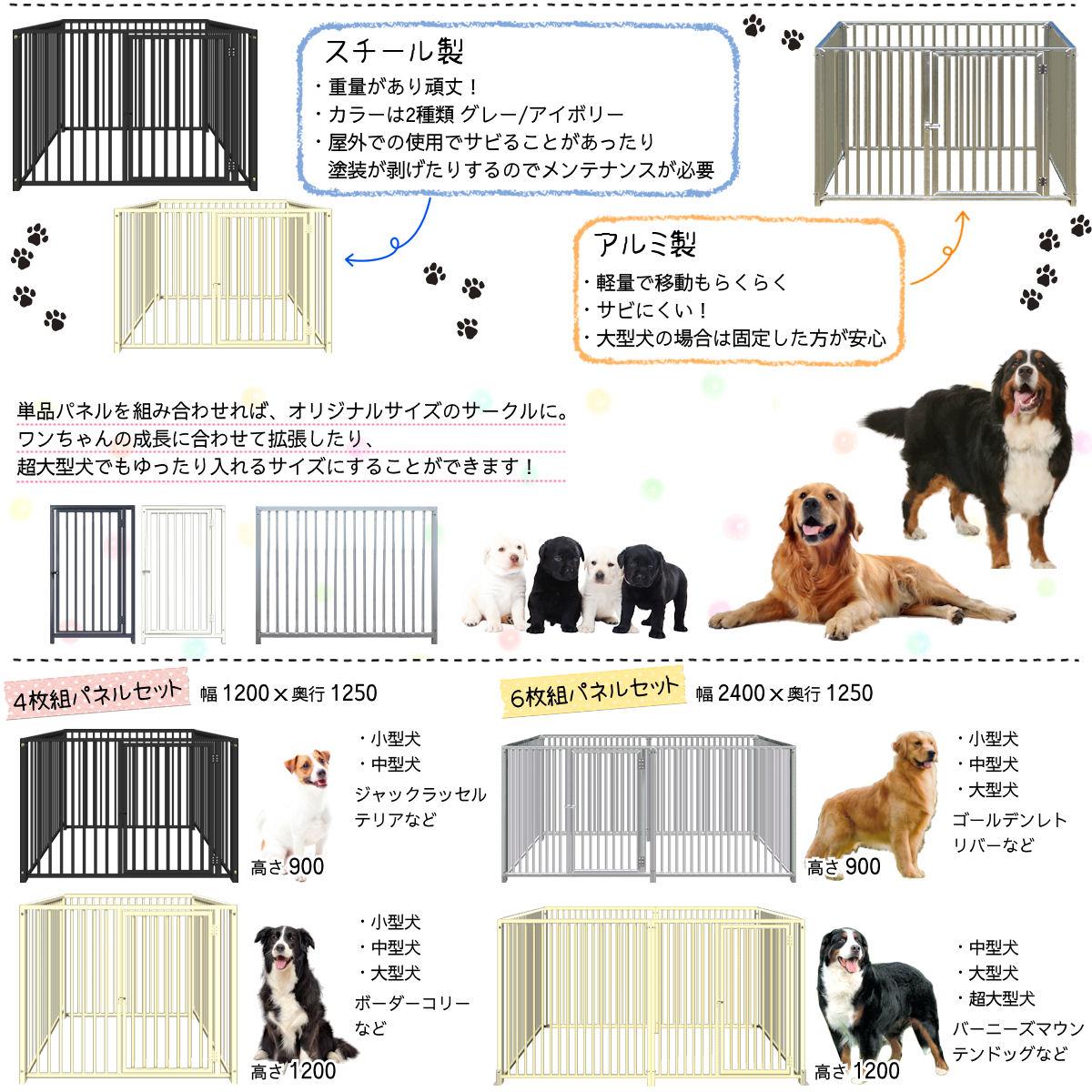 犬top2