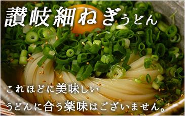 讃岐ねぎ・黄金生姜、薬味付き讃岐ネギうどんセット