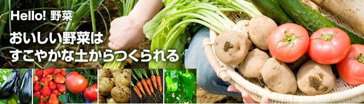 ホンダ 耕うん機 家庭菜園