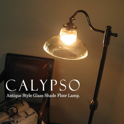 Calypso calypso mozeypictures Image collections