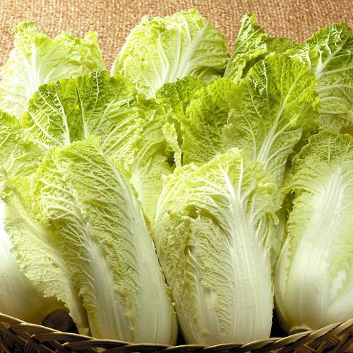 契約農家が季節ごとに栽培地を替えて育てた厳選野菜