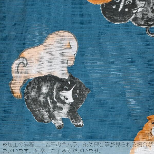 綿段絽 変わり織り レディース
