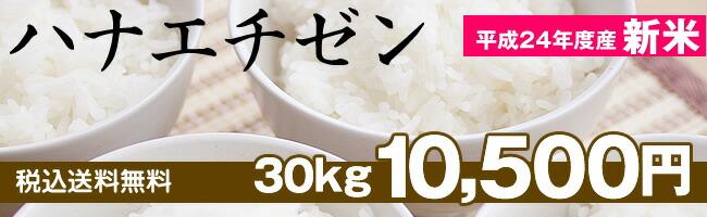 ハナエチゼンは、ごはんの味がよくわかるおいしいーお米です!