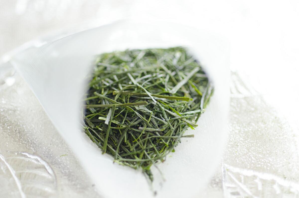 お茶ティーバッグ 茶葉