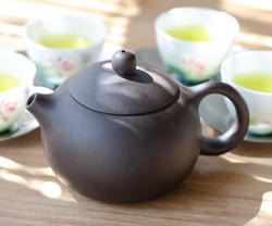 帯網急須 紫砂茶壷 深蒸し茶用260cc