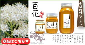 百花ハチミツ