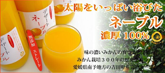 愛媛産 完熟のみごろネーブル100%果汁