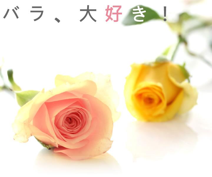 バラのジュエリー特集。ピアス、リング、イヤリング、イヤーカフなど盛りだくさん。