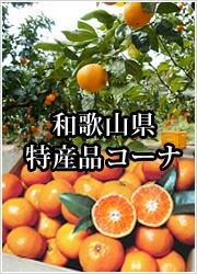 和歌山県特産品コーナー
