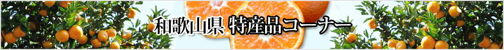 和歌山県 特産品コーナー