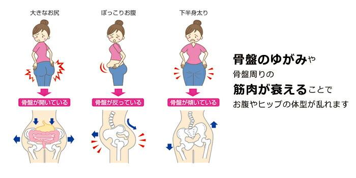 骨盤よゆがみや骨盤周りの筋肉が衰えることで、お腹やヒップの体型が乱れます