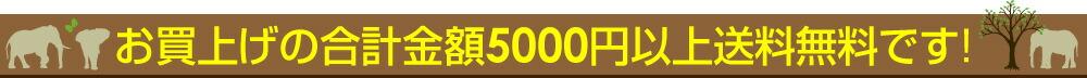 お買上げの合計金額5,000円以上送料無料です。