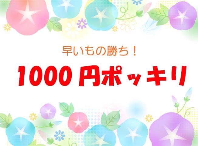 1000円ポッキリ!お買い得だよ〜