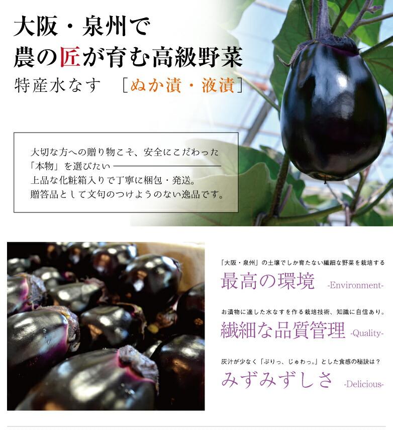 大阪・泉州で農の匠が育む高級野菜|特産水なす