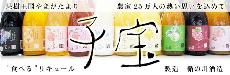 子宝リキュール(楯の川酒造)