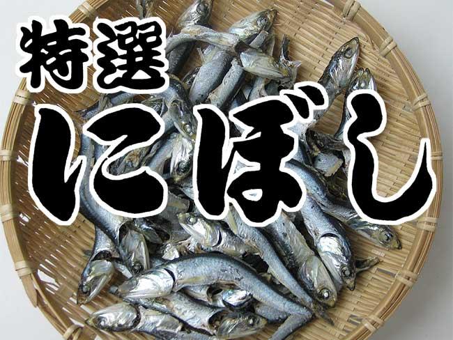 楽天市場】にぼし 1kg 【カタク...