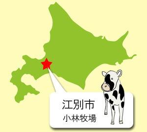 江別市小林牧場
