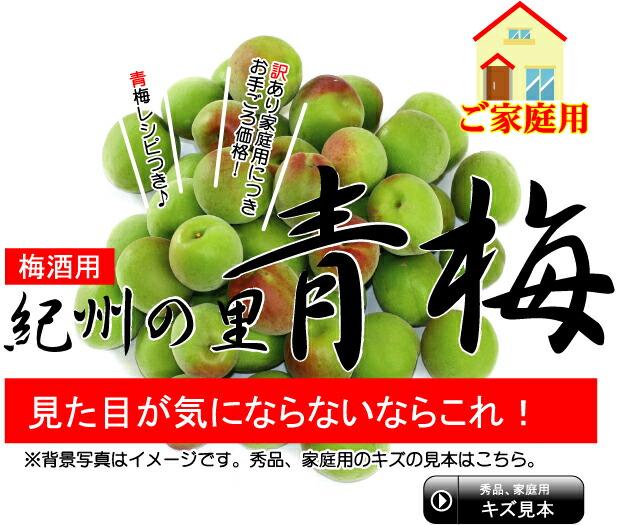 【梅酒用】紀州の里 青梅(家庭用)