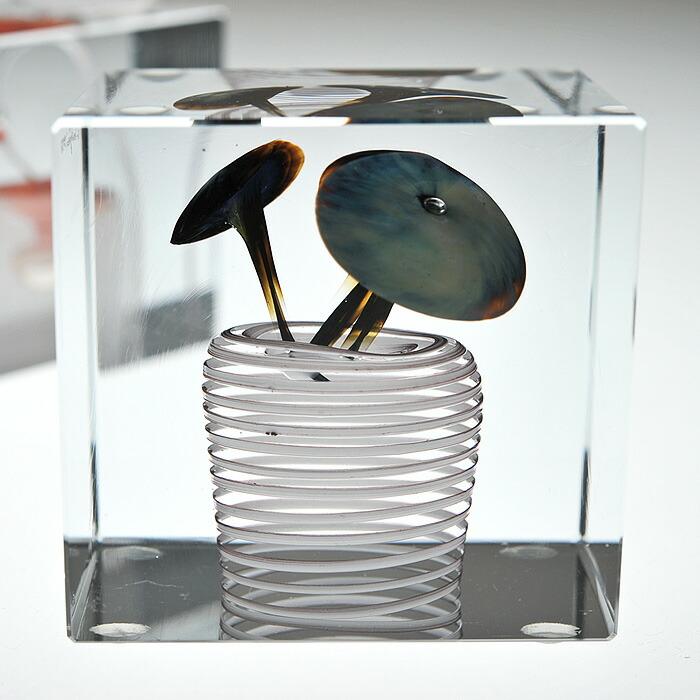 iittala/イッタラ (Nuutajarvi/ヌータヤルヴィ) Oiva Toikka オイバ・トイッカ Annual Cube アニュアル キューブ 《ビンテージ/vintage/ヴィンテージ》  1978年