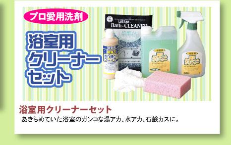 プロ愛用洗剤 浴室用クリーナーセット
