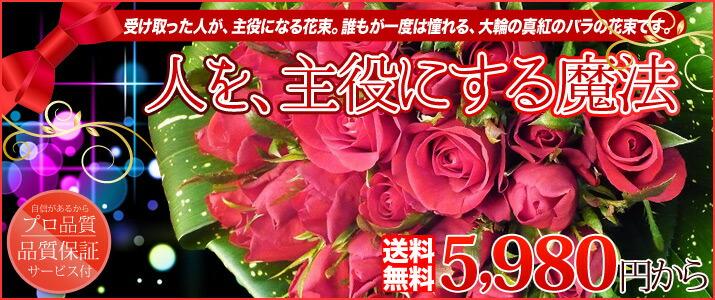 真紅のバラシリーズ
