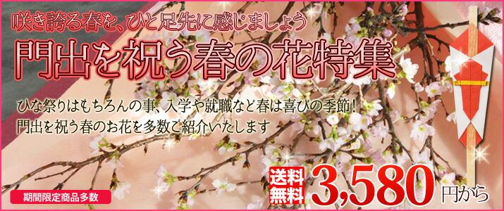 門出を祝う春のお花特集