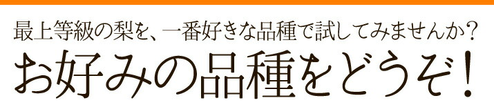 品種が選べる福島県の特秀品「梨」(幸水梨/豊水梨/秋月梨)