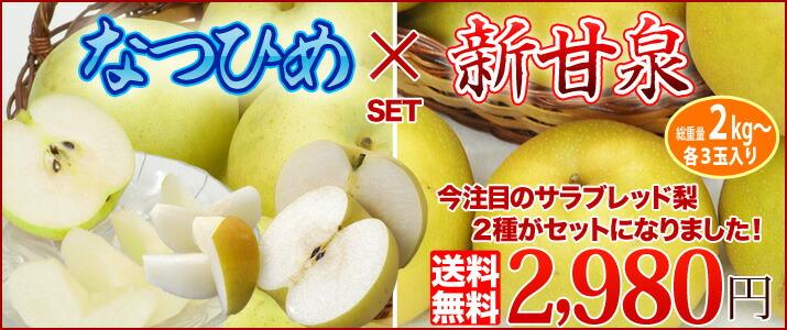 新甘泉×なつひめの梨セット