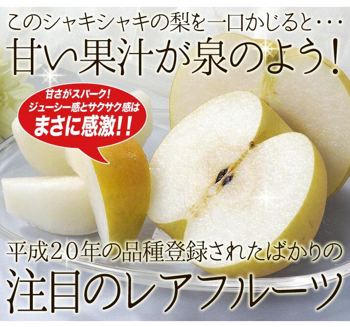 二十世紀梨の後継種 鳥取県産「新甘泉」