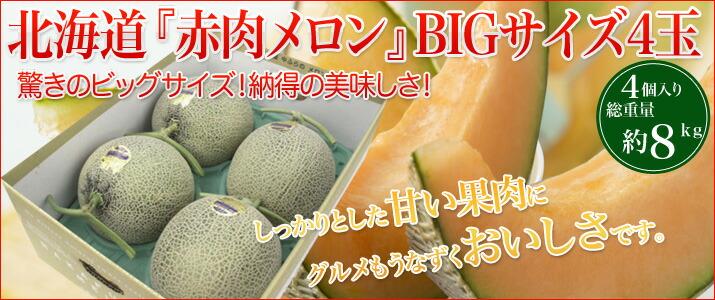 北海道赤肉メロン4玉セット